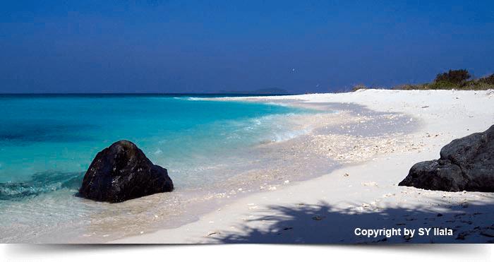 south_east_asia_dreams_gallery_similan-island-richelieu-rock-5–(2)